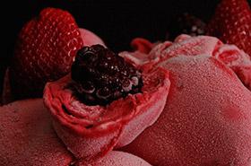 Frutas, Congelados y Mermeladas